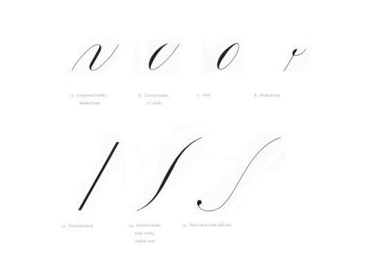 Working drawings for the book <i>Learning Curves</i>